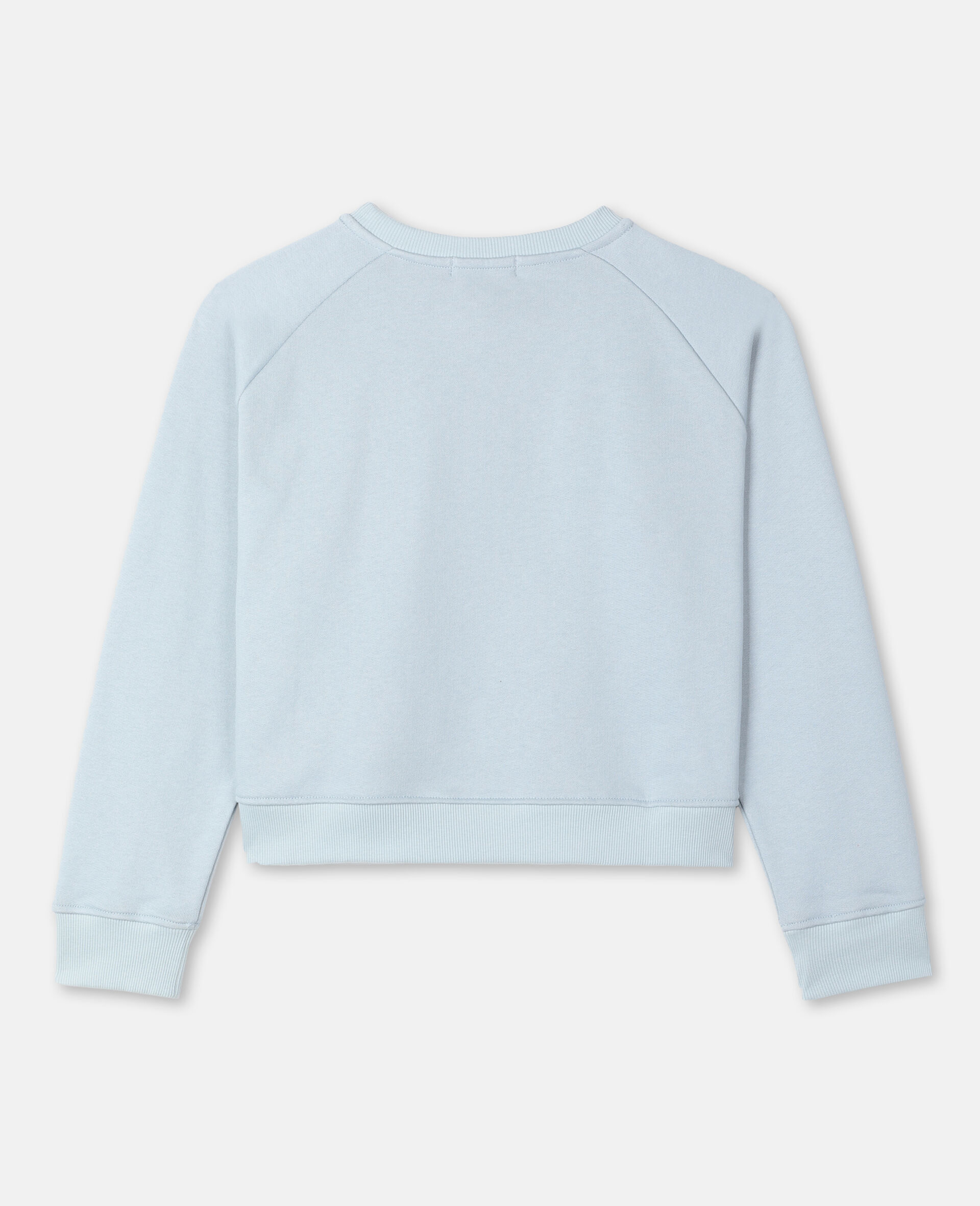 Painty Flamingo Cotton Fleece Sweatshirt -Blue-large image number 3