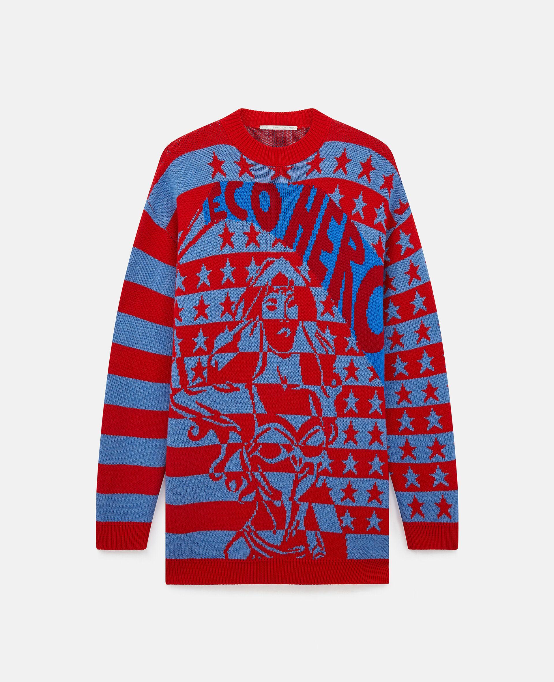 Eco Hero Intarsia Sweater-Multicolour-large image number 0