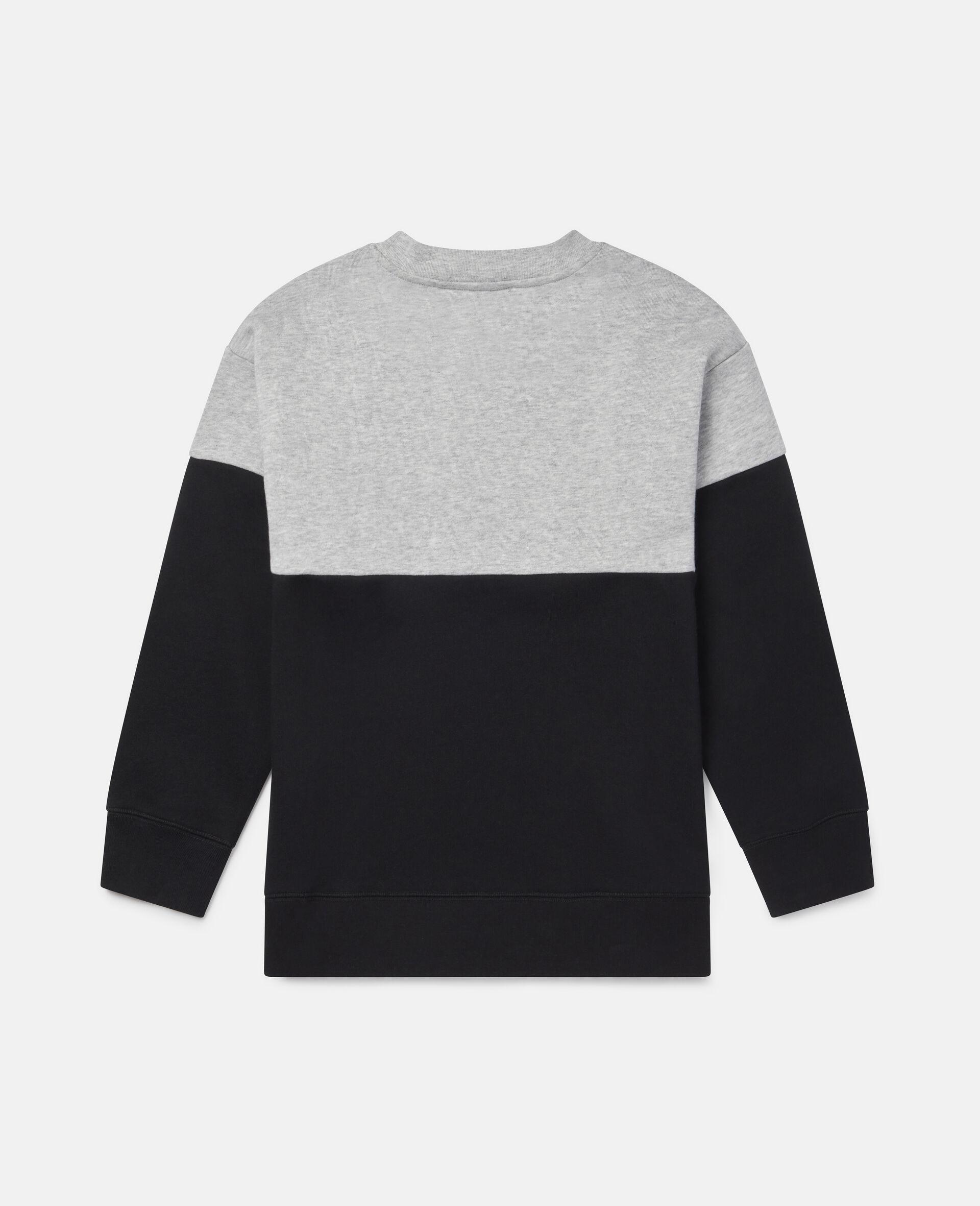 Oversized Wild Fleece Sweatshirt-Multicolour-large image number 3