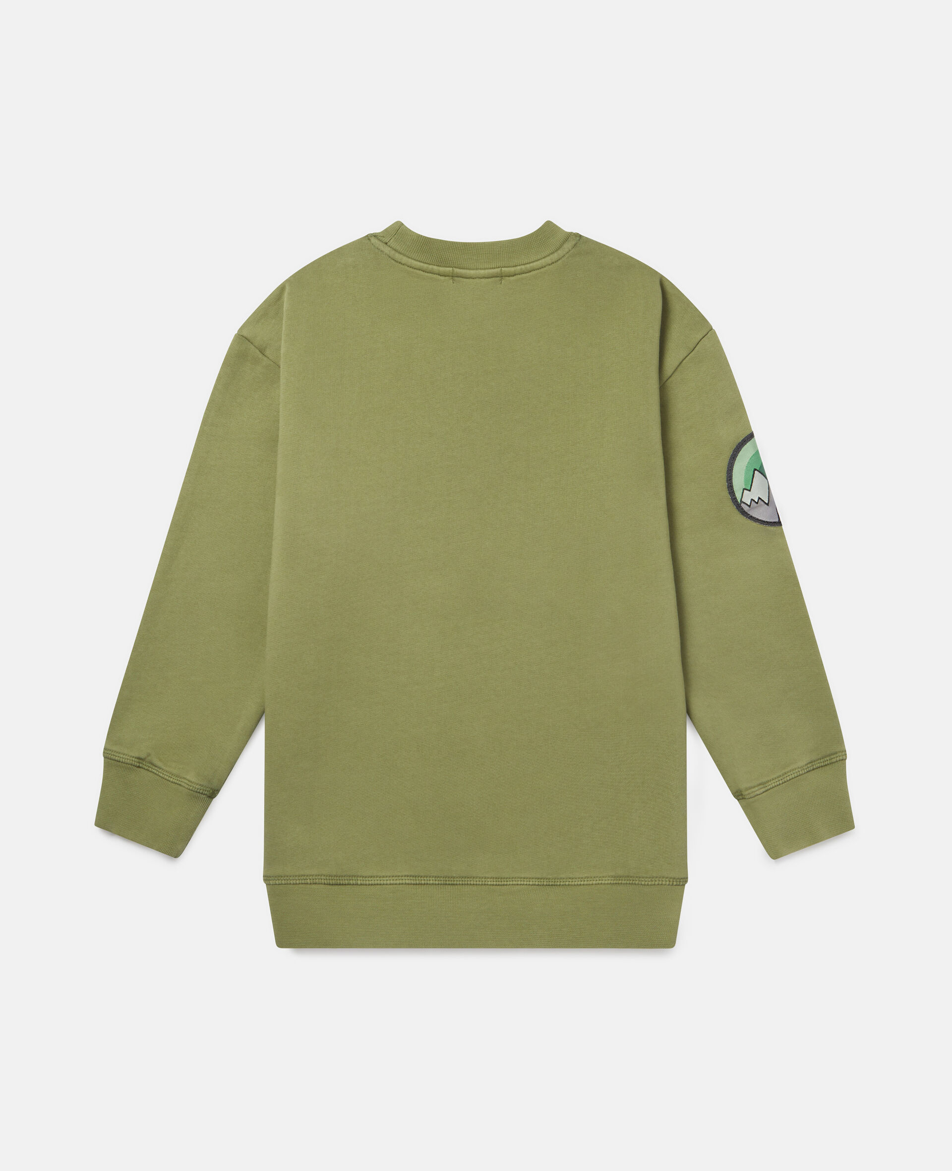 Felpa Oversize in Cotone con Badge-Verde-large image number 3