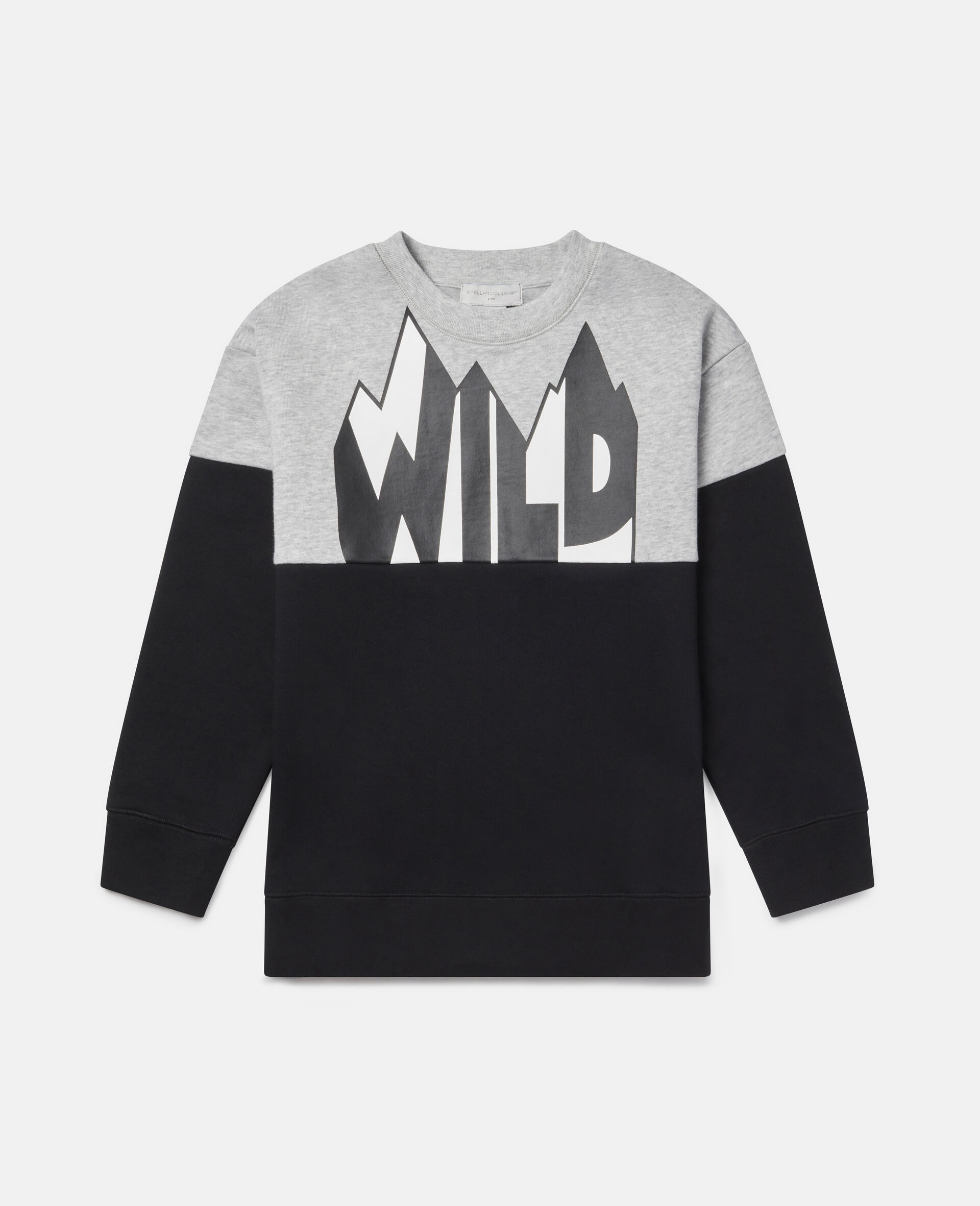 Oversized Wild Fleece Sweatshirt-Multicolour-large image number 0