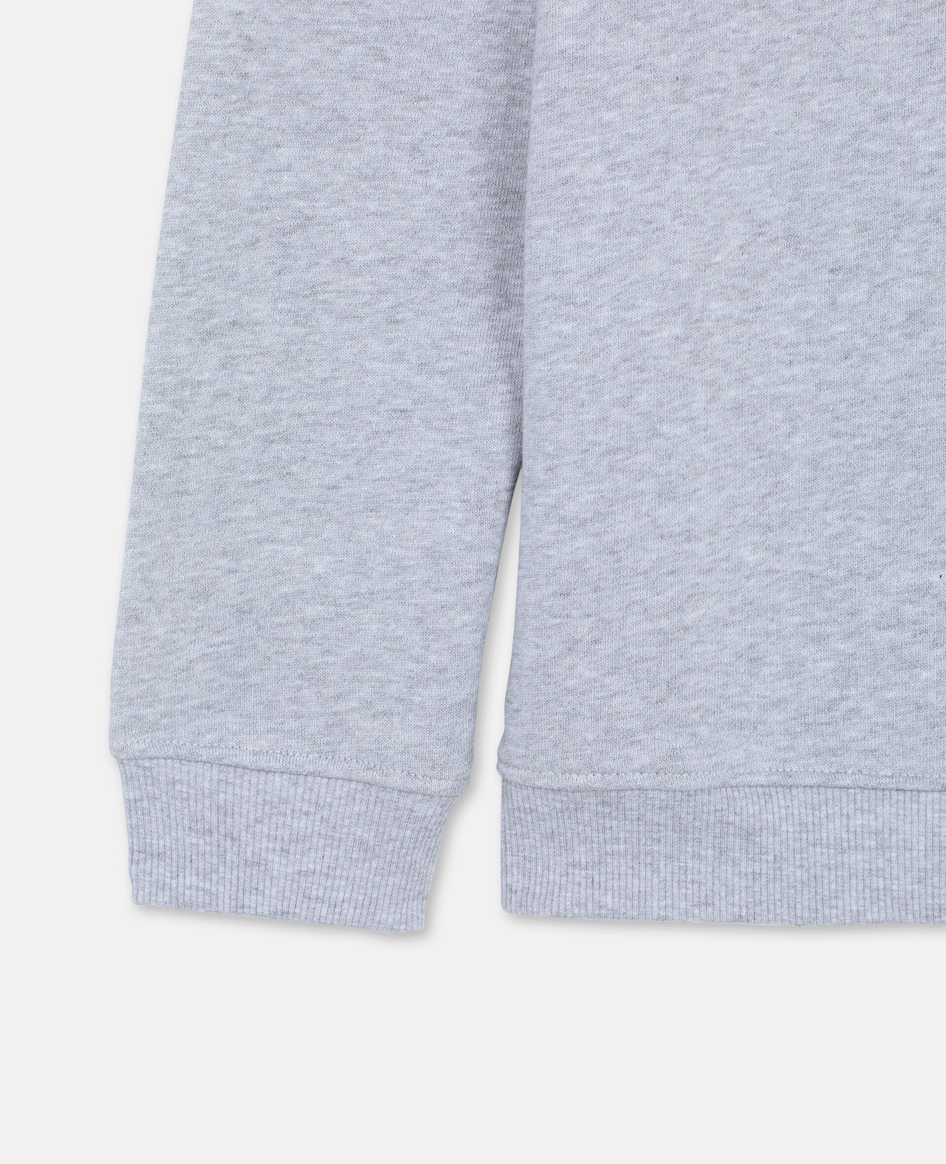 Roarrr Cotton Sweatshirt -Grey-large image number 1