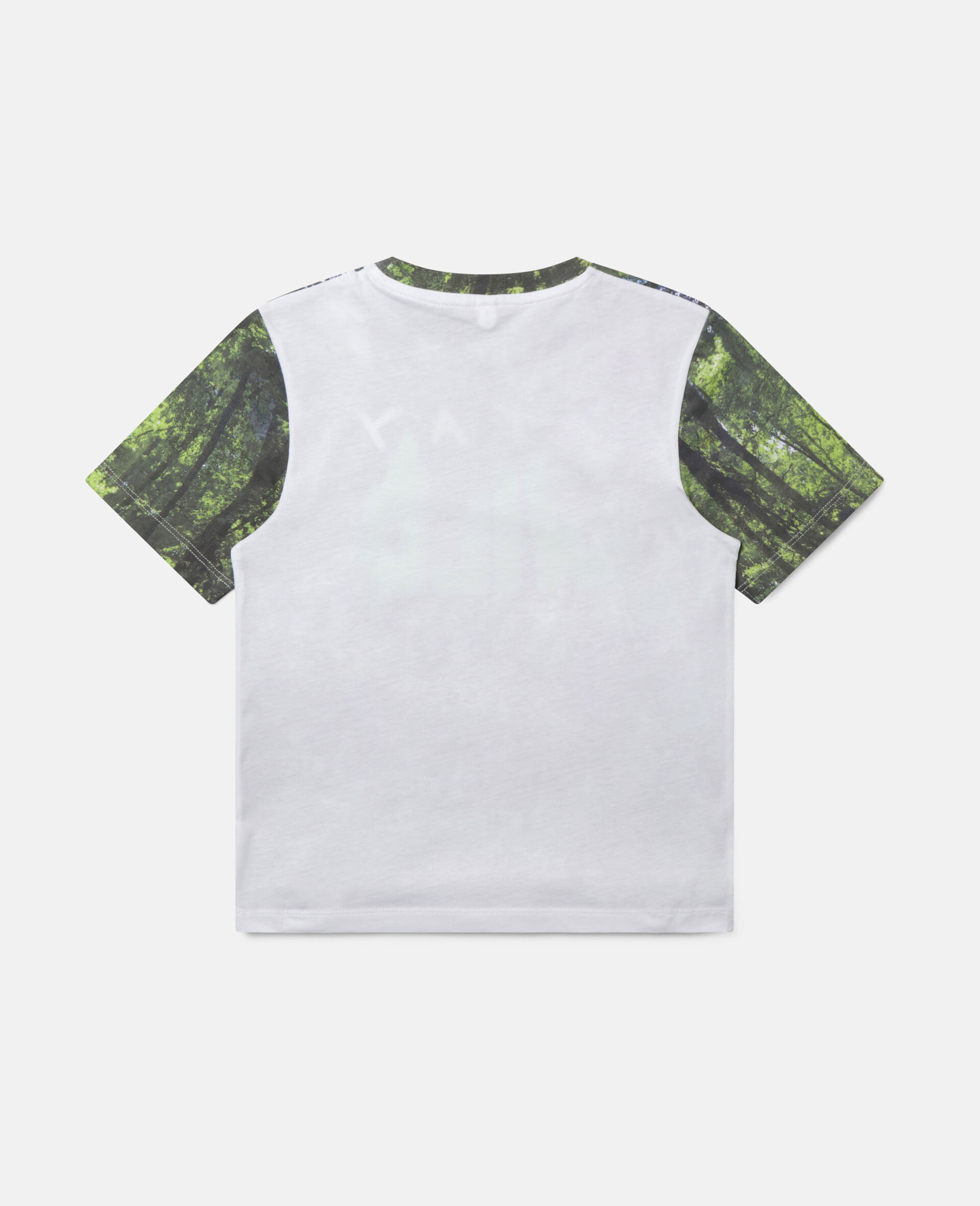'Stay Wild' Forest Cotton T-shirt-Multicolour-large image number 3