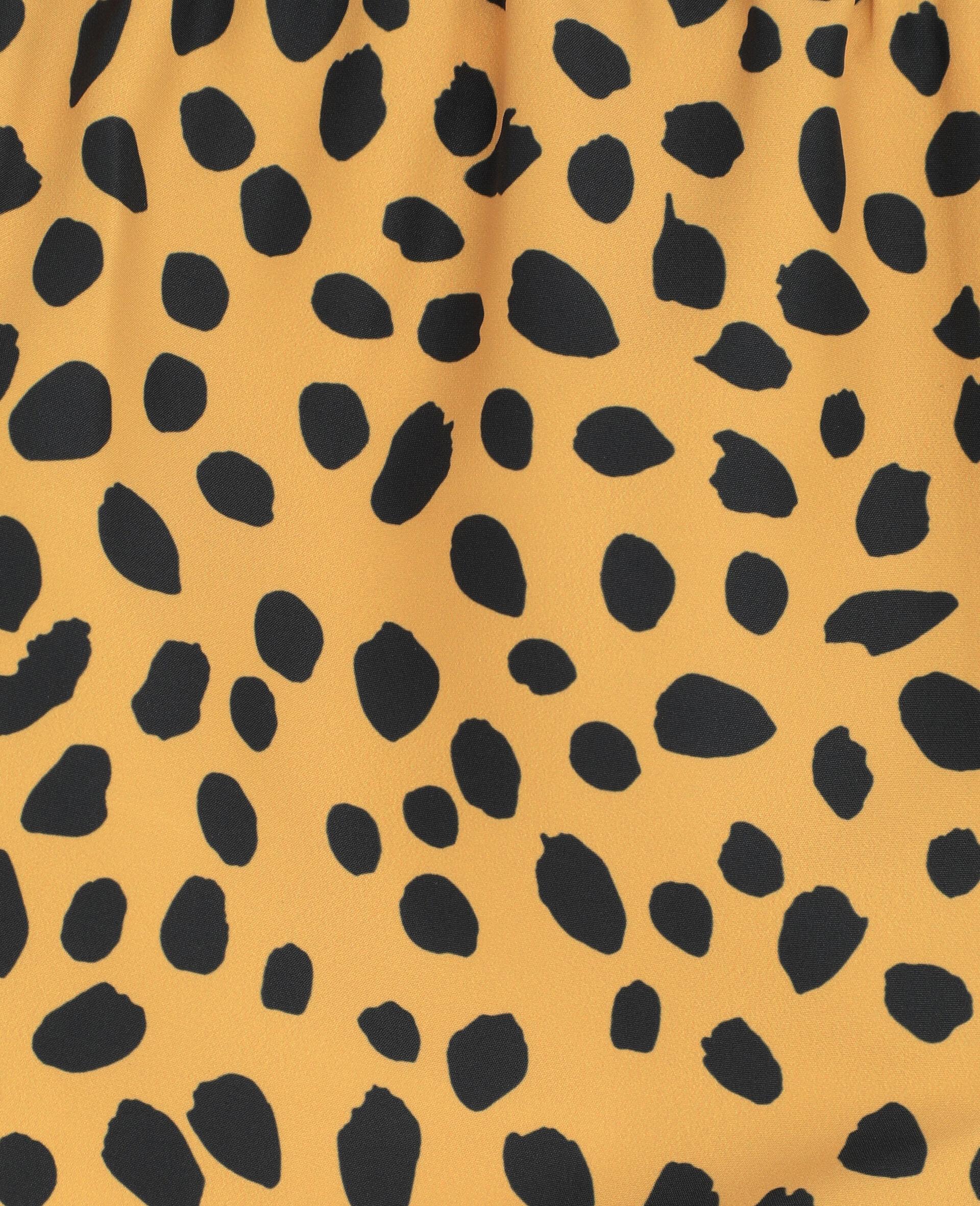 Cheetah Dots Swim Shorts-Multicolour-large image number 2