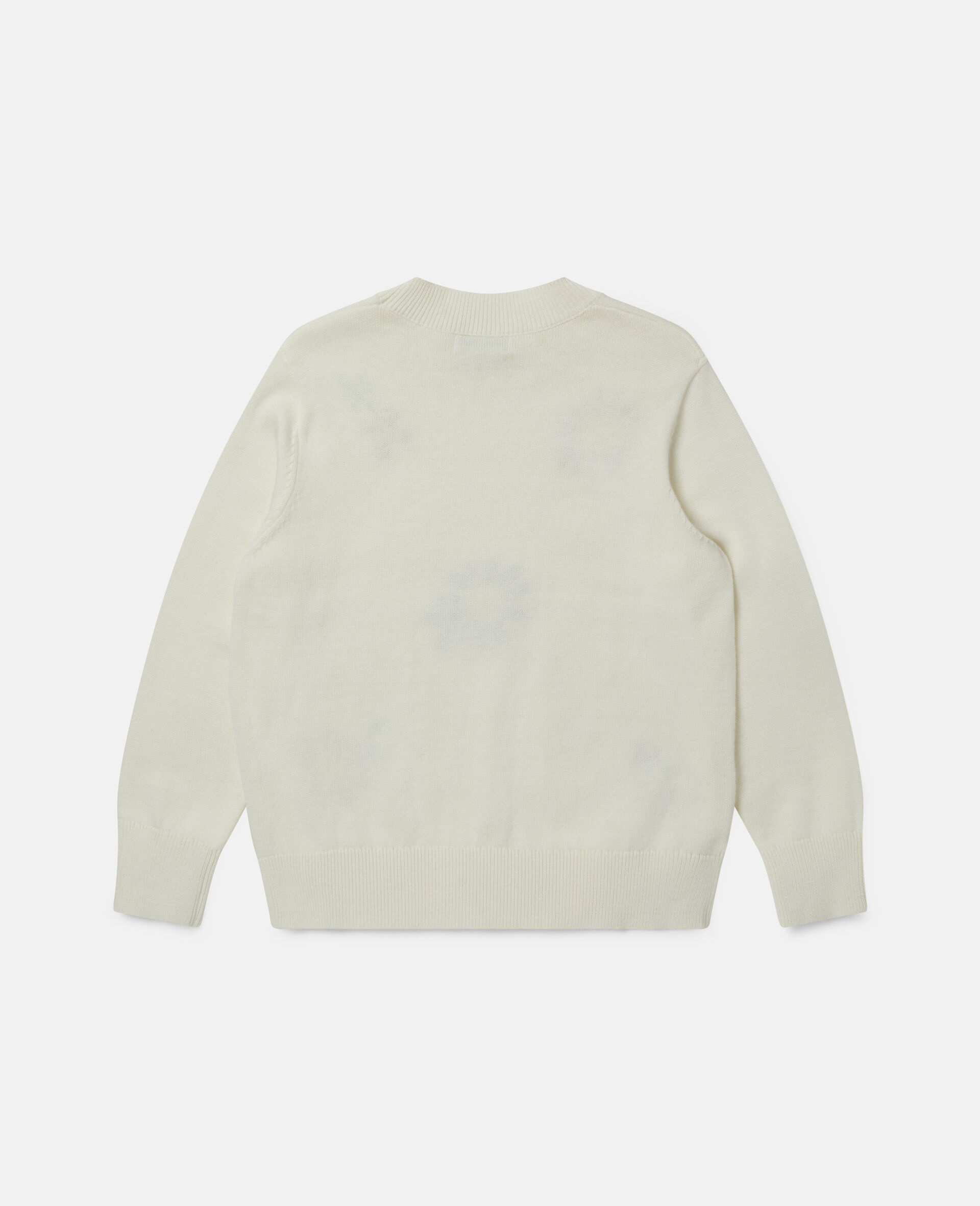Embroidered Flowers Oversized Jumper-White-large image number 3
