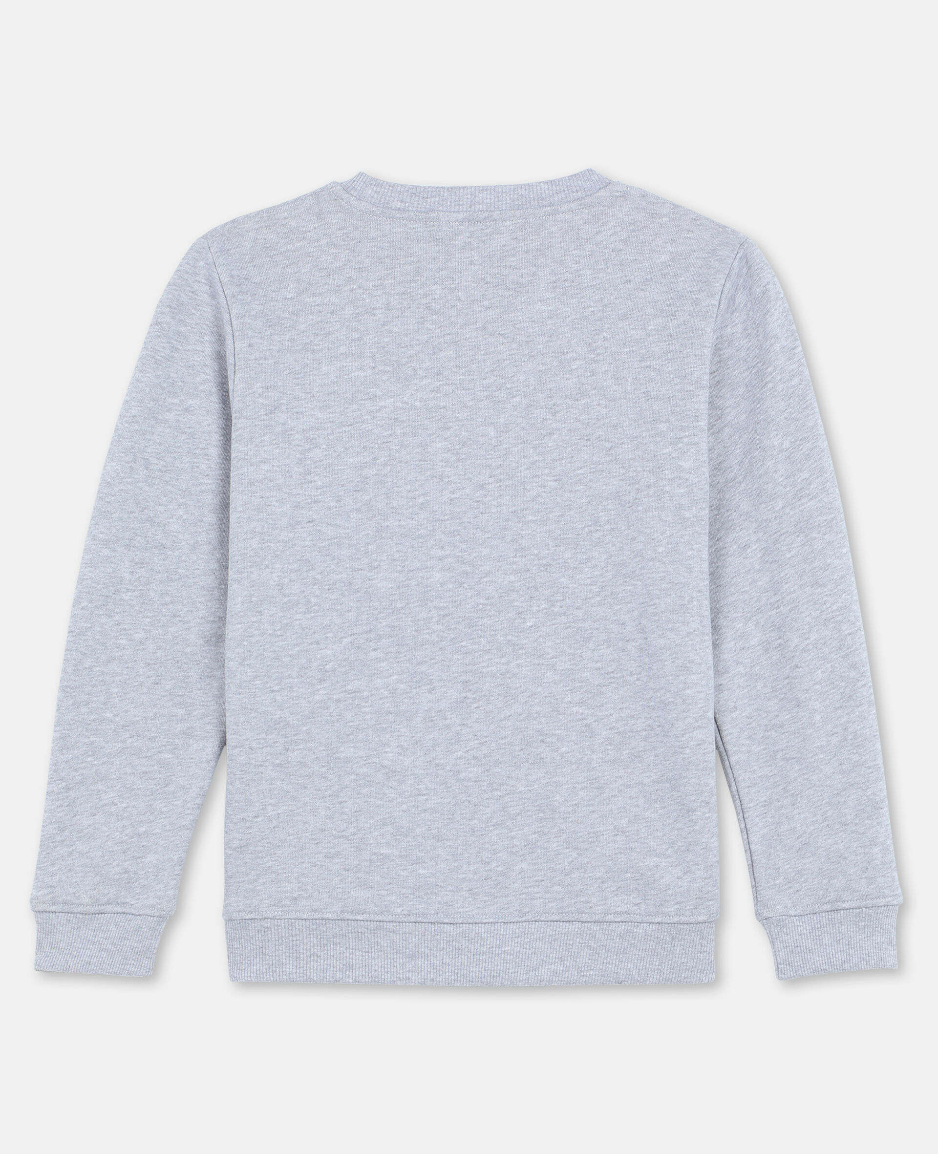 Roarrr Cotton Sweatshirt -Grey-large image number 3