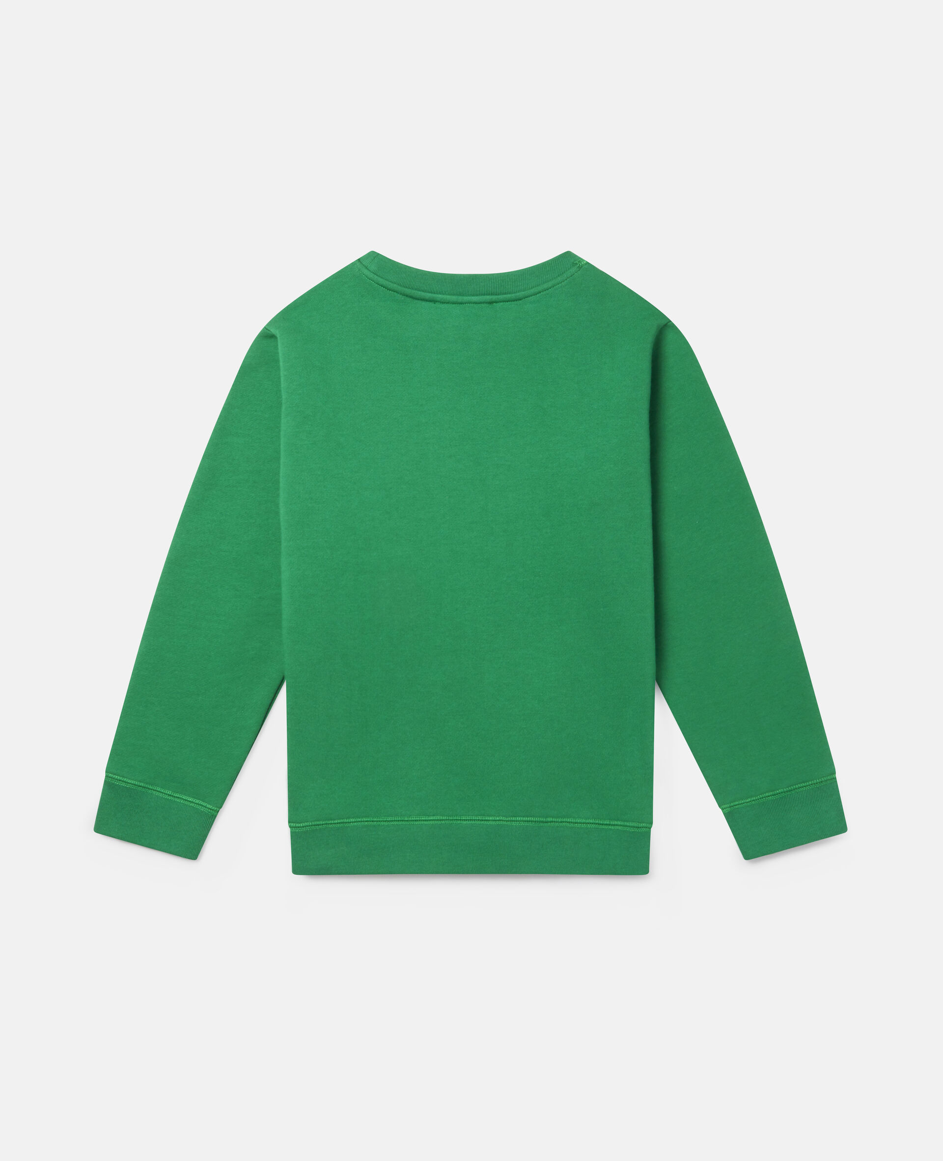 Spray Gang Fleece Sweatshirt-Green-large image number 3