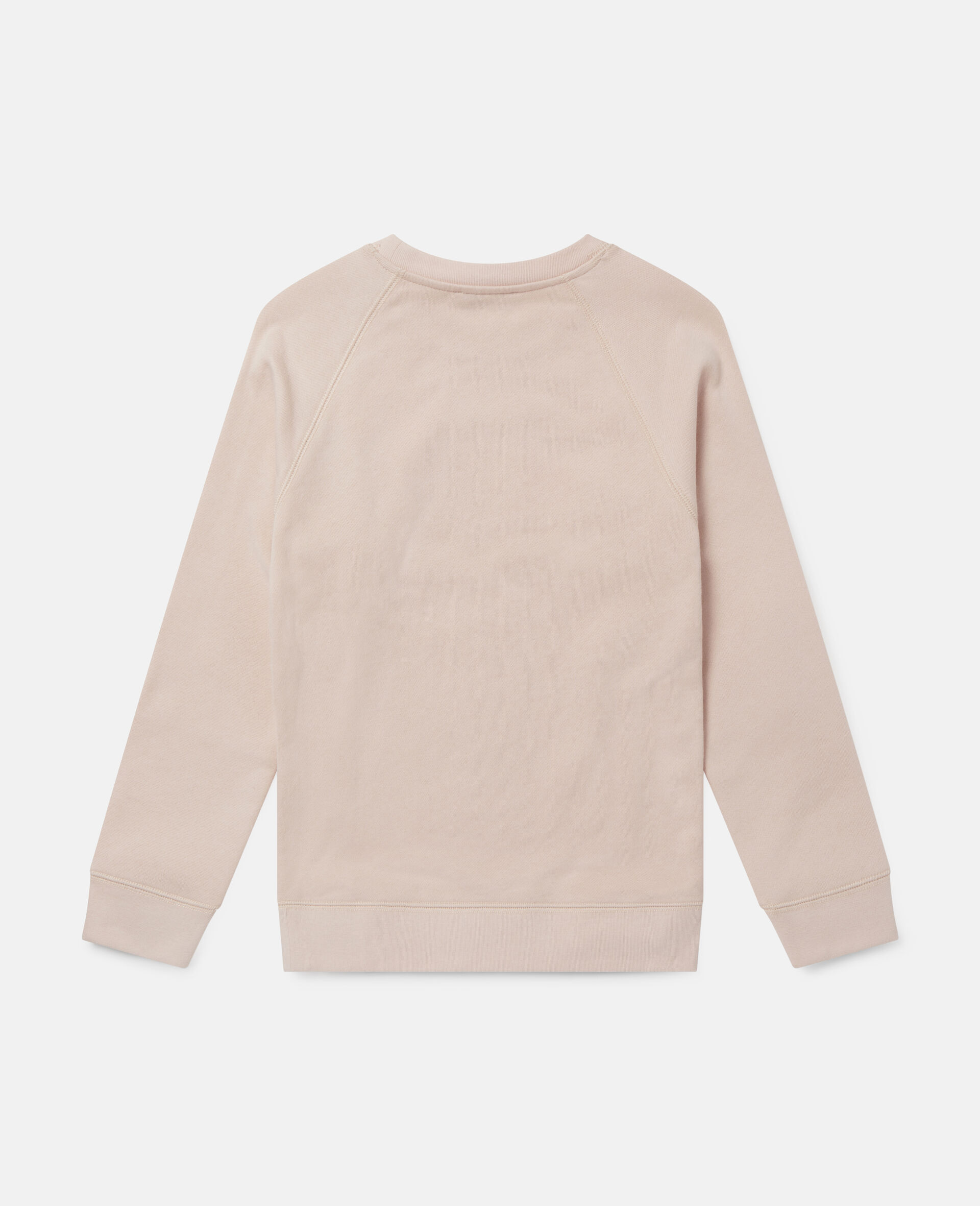 Sweatshirt aus Fleece mit Pudel auf Rollerskates-Rose-large image number 3