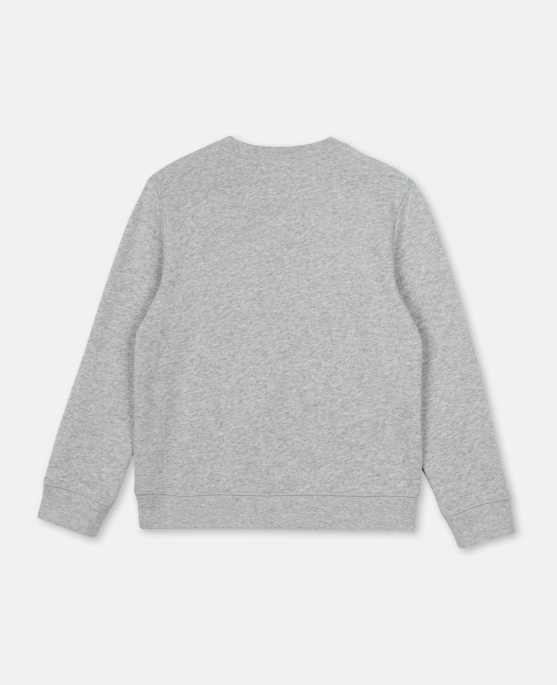 Pirate Cotton Sweatshirt -Grey-large image number 3